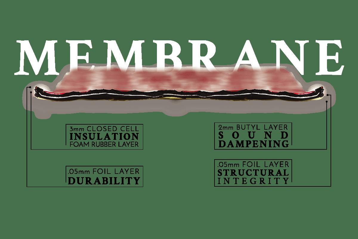MEMBRANE LAYERS 2